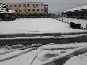 まさかの雪